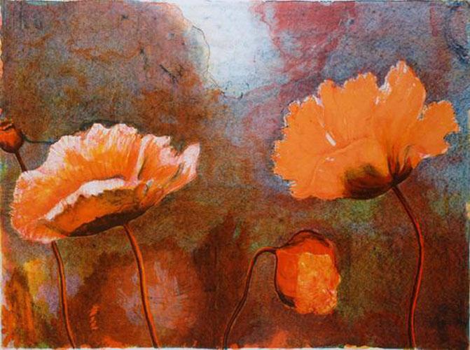 Poppies 1991